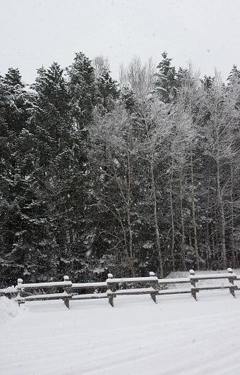 20151124網走は雪.jpg