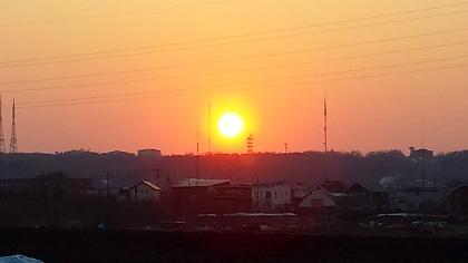 春の夕日.jpg
